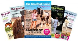 Animal rescue sponsors - the barefoot horse