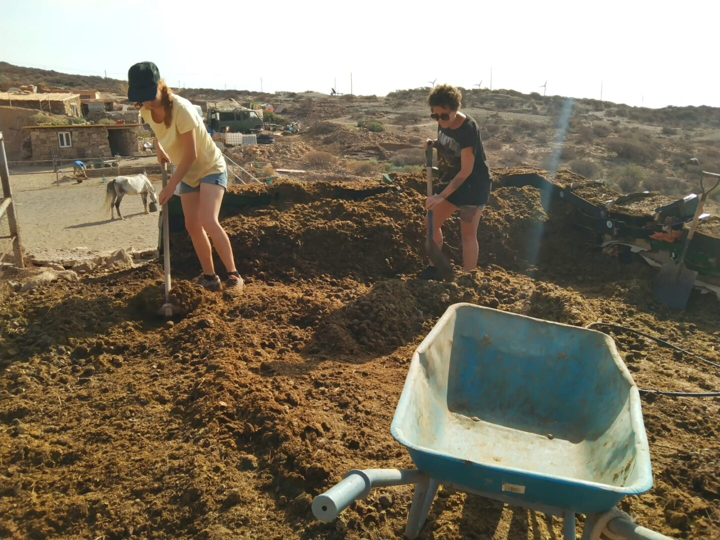 Manure composting as part of sustainable living