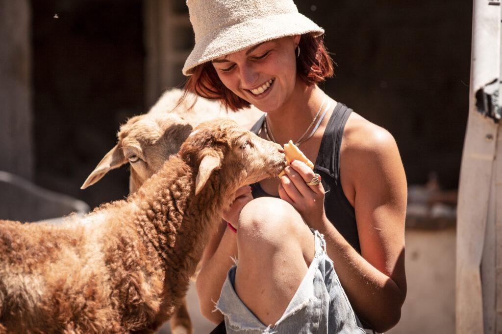 happy volunteer with sheep