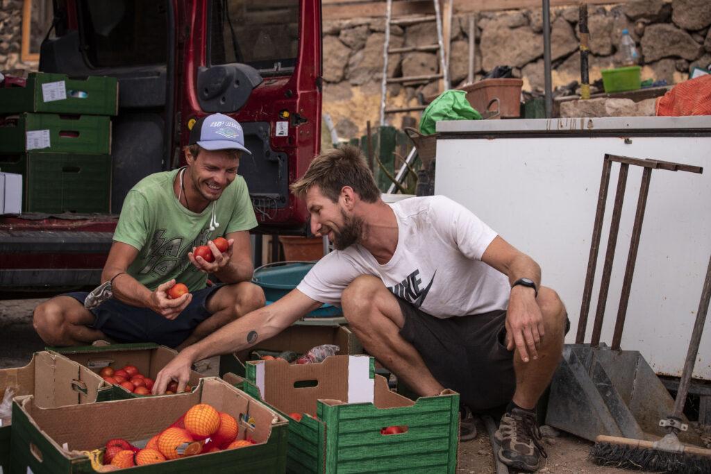 sort sustainable veg
